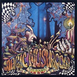 Magic Mushroom Band - Re-Hash